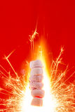 Pink Marshmallows on fire Stock Images