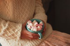 Lovely girl holding marshmallows in her hand. Pink marshmelow, cozy dreams of a young girl,  appetizing, tender pastel tones, photo for background.The girl is Stock Photos