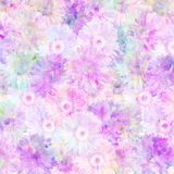 Pink and mauve gerberas. Soft pastel pink and mauve clustered gerberas background Royalty Free Stock Image