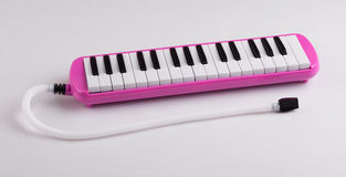 Pink melodeon music instrument Stock Images