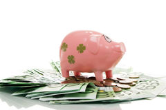 Pink money pigg with Euro Stock Photo