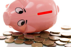 Pink money pigg with Euro. Coin Royalty Free Stock Image