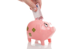 Pink money pigg with Euro Royalty Free Stock Photography