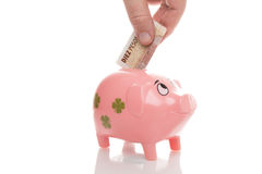 Pink money pigg Pesos Argentina Stock Photo