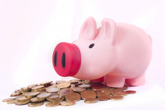 Pink money piggy bank saving euro coins. Pink money piggy bank with lots of euro coins saivings Royalty Free Stock Images