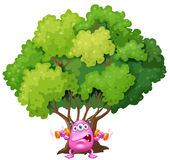A pink monster exercising under the tree Stock Images