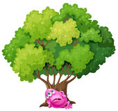 A pink monster resting under the tree Stock Photos
