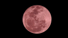 Pink moon Stock Photography