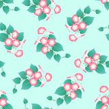 Pink Morning Glory on Green Mint Background. Vector Illustration.  vector illustration