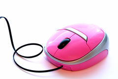 Pink Mouse Royalty Free Stock Image