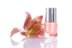 Pink nailpolish Stock Image