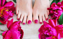 Pink Nails And Peonies Stock Photo