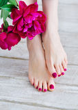 Pink nails and peonies Royalty Free Stock Photo