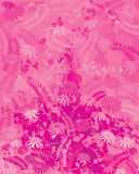 Pink Nature Royalty Free Stock Image