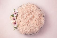 Pink Newborn Digial Backdrop for Photgraphers with Magnolia Blooms. Newborn Digial Backdrop for Photgraphers with Magnolia Blooms stock photo