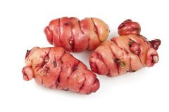 Pink Oca Tubers Stock Photos