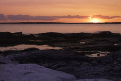 Pink Ocean Sunset Stock Image