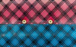 Pink och blått läder Royaltyfri Fotografi