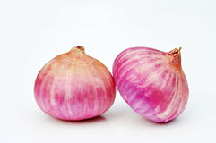 Pink onion isolated Royalty Free Stock Photography
