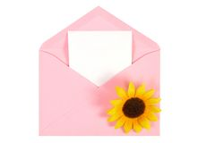 Pink open envelope with paper Isolated Stock Images