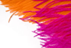 Pink Orange feather Stock Photo