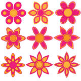 Pink and orange flower collection Royalty Free Stock Photos