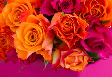 Rose bouquet close up Royalty Free Stock Image