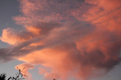 Pink Orange Sunset Clouds Royalty Free Stock Photography