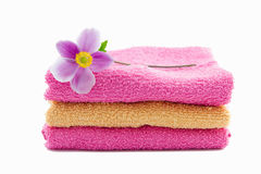 Pink and orange towels with anemone flower on it Stock Image