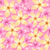 Pink and orange tropical flowers seamless pattern Royalty Free Stock Photos