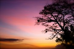 Pink and orange tropical sunset Royalty Free Stock Photography