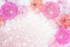 Pink,orange,white roses flower border glitter background. Beautiful pink,orange,white roses flower border glitter background for valentine in pastel tone Royalty Free Stock Photos