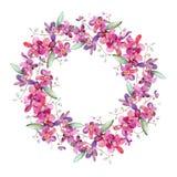 Pink orchid bouquet floral botanical flower. Watercolor background illustration set. Frame border ornament square. Pink orchid bouquet floral botanical flower stock illustration