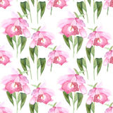 Pink orchid, cattleya on white background. Seamless watercolor pattern Stock Photo