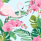 Pink orchid flamingo tropical leaves pattern blue. Bright orchid phalaenopsis flowers, exotic pink flamingo bird, tropical rainforest jungle tree palm mostera vector illustration