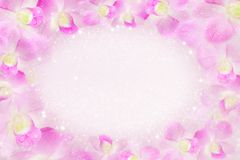 Free Pink Orchid Flower Frame Blooming In Soft Background With Bokeh And Glitter Light ,copy Space, Idea For Valentine Card Royalty Free Stock Images - 101819089