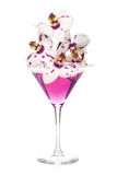 Pink orchid flowers in a cocktail glass Stock Photos