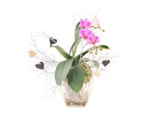 Pink orchid and hearts for valentines day. Stock Photo
