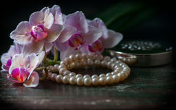 Pink orchid with a pearl necklace Stock Image