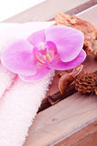 pink orchid potpourri aroma decoration Stock Images