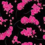 Pink orchid seamless pattern Royalty Free Stock Photography