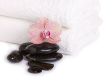 Pink orchid and spa stones Royalty Free Stock Photo