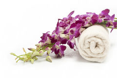 Pink orchid and towel Royalty Free Stock Photography