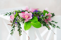 Pink orchid wreath Stock Image