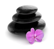 Pink orchid and zen stones isolated Royalty Free Stock Photo