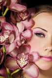 Pink Orchids Royalty Free Stock Photos