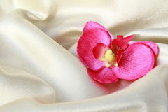 Pink orchids on a beige silk Royalty Free Stock Photo