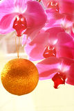 Pink orchids and decoration Stock Photography