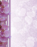 Pink Orchids Floral Border wedding Royalty Free Stock Photo