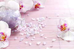 Pink orchids and spa aromatherapy abstract still life Stock Image